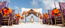 Majestic Flaire Destination Wedding