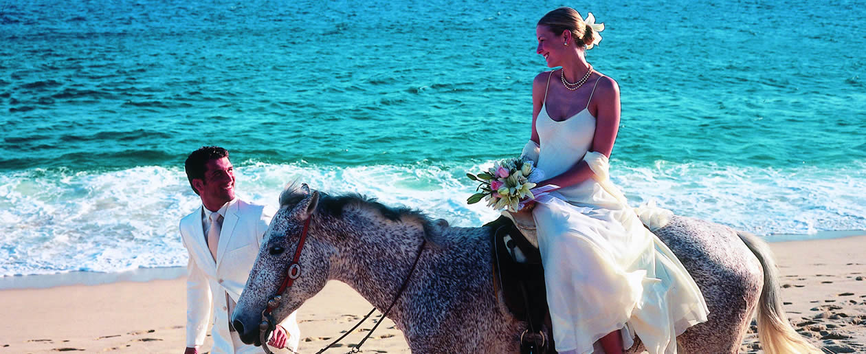 Exchange wedding vows on the beach at the Riu Santa Fe in Cabo San Lucas.